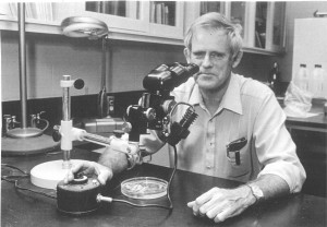 Photo of Dr. Mecham